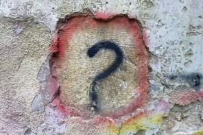 Curiosity: The Question of 'Why?'
