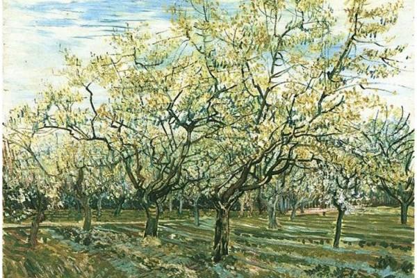 Van_Gogh_-_Obstgarten_mit_blühenden_Pflaumenbäumen