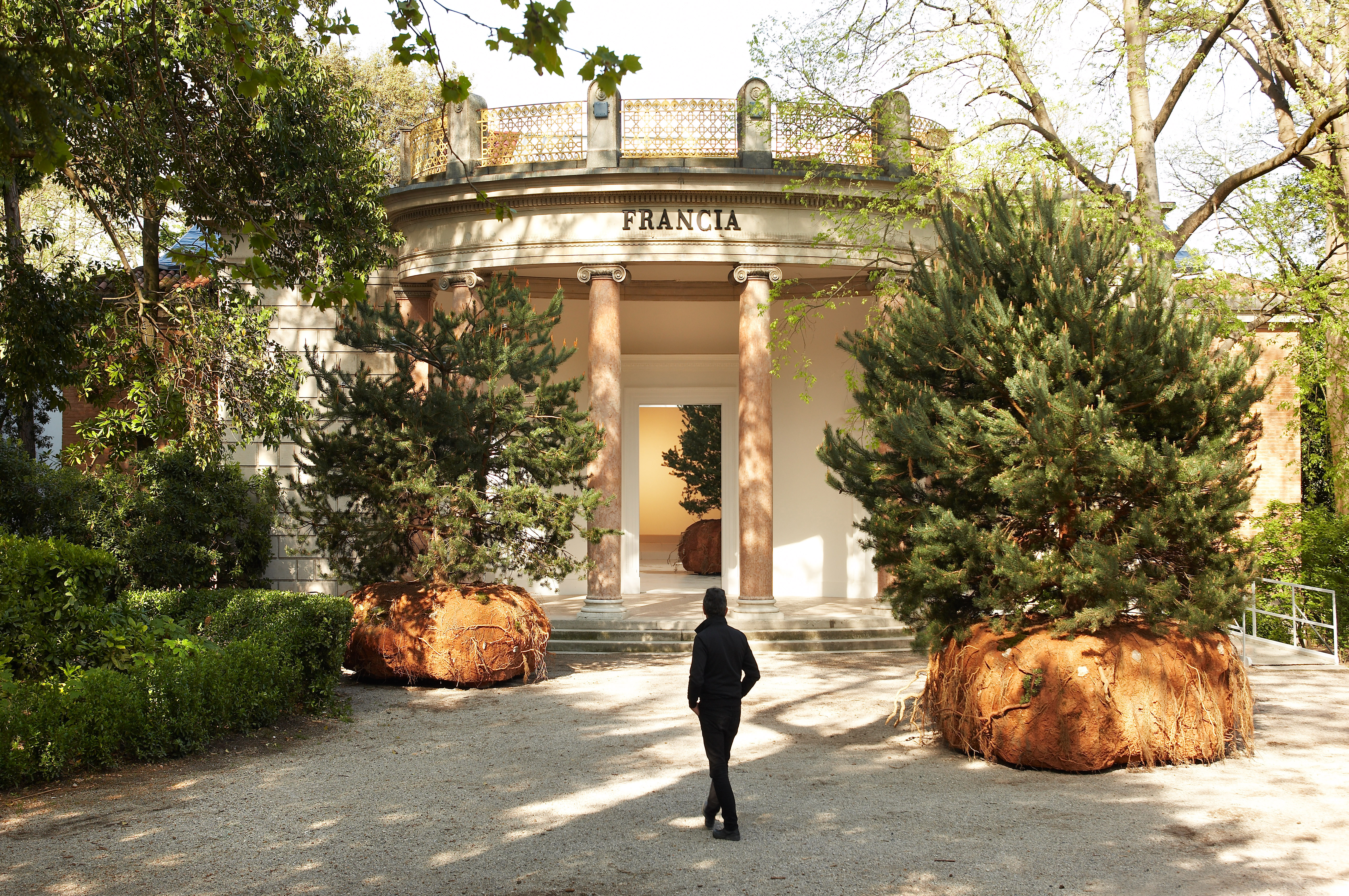 Stars of the 56th Venice Biennale, selected by David Ebony - Yale ...