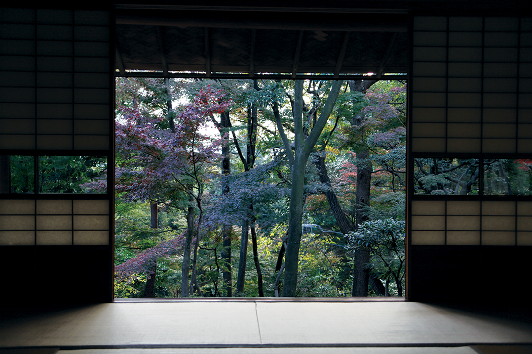 JAPANESE MUSEUMS & THE RUGBY WORLD CUP: A TRAVELLER'S GUIDE